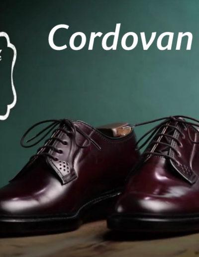 Cordovan-Cream